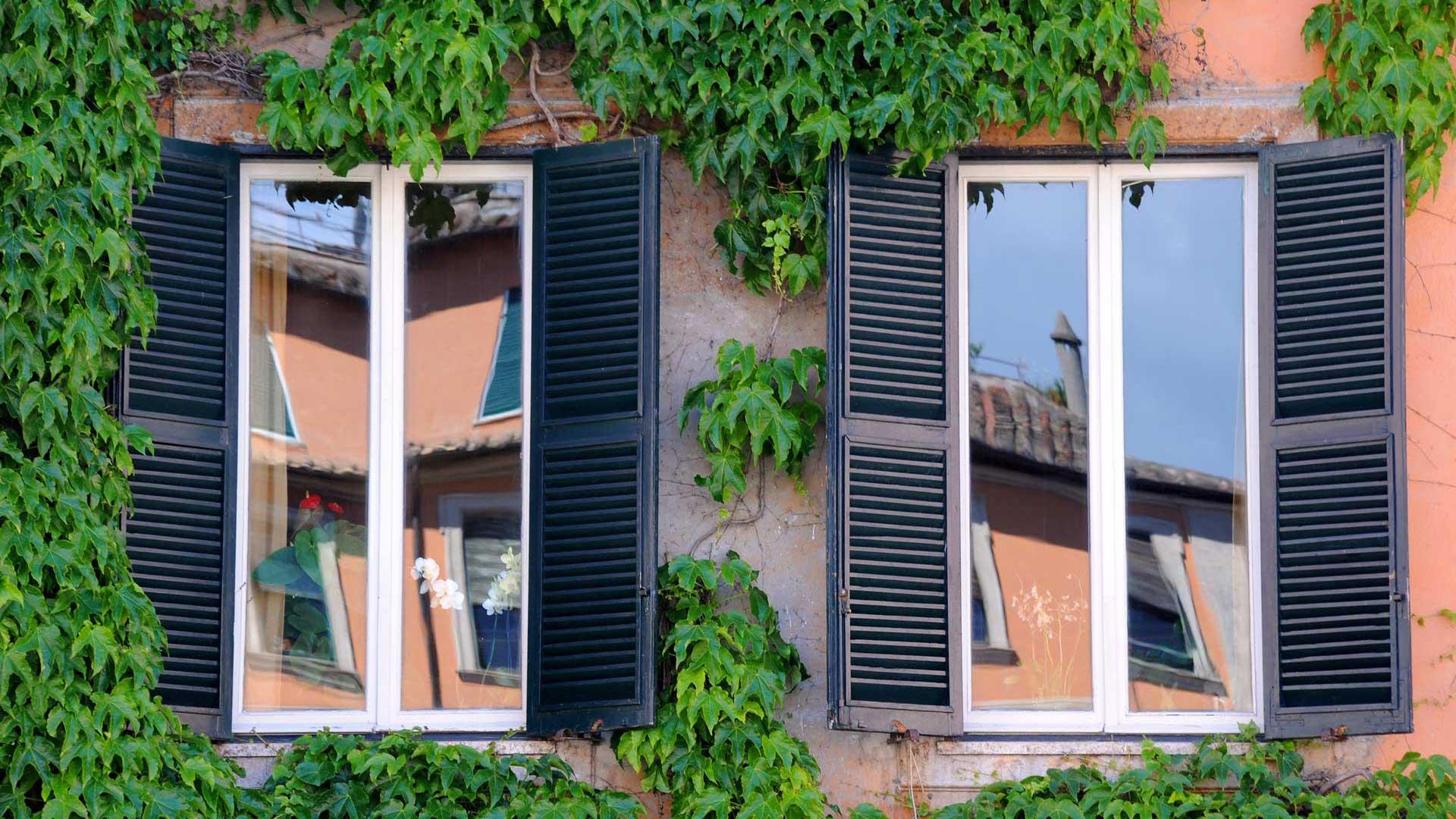 Fenêtre Pvc Bois Alu à évreux Vernon Rénovation Pose